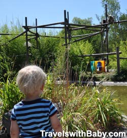See monkeys, snakes, owls, flamingos and more free of charge.