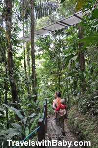 On the ground-level trail, with a hanging bridge above.