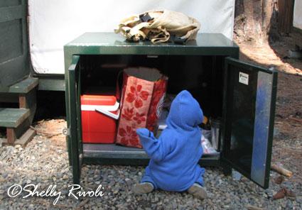 bear-proof box Yosemite