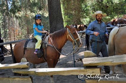 horseback riding at Yosemite