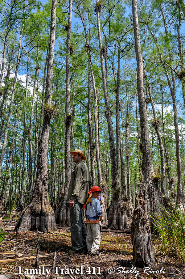 family travel tales including Big Cypress National Preserve