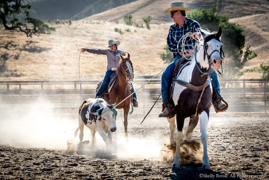 team ropers, female and male, in action shot at rodeo
