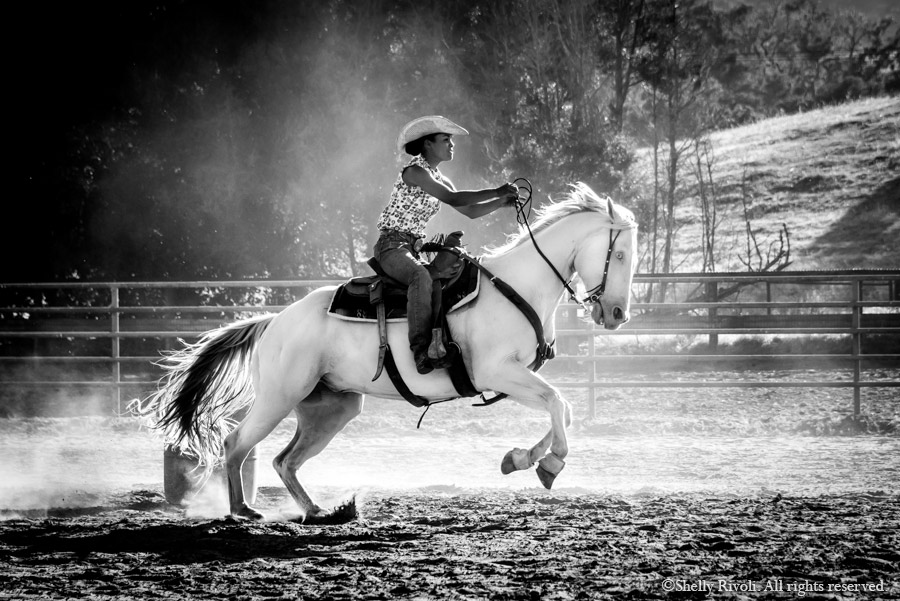 woman barrel racing on white horse, lunging in air