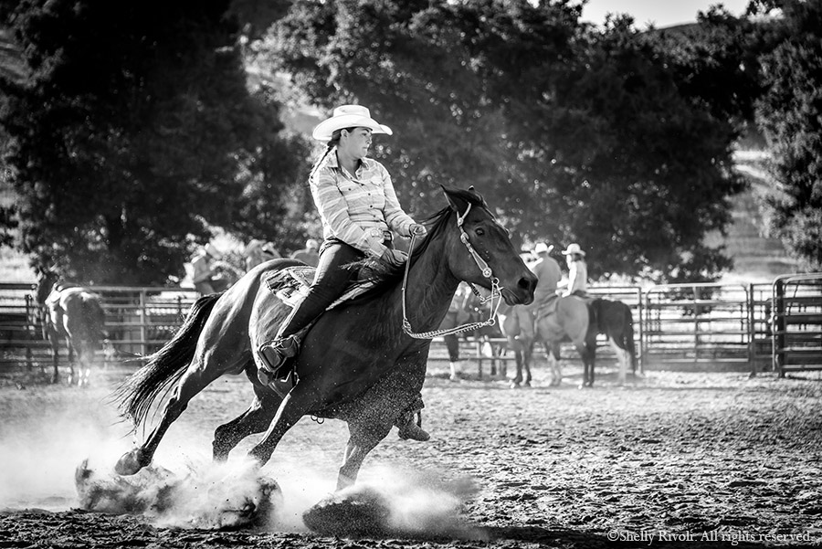 a woman wrangler on horseback digs deep, hooves and dirt flying, in barrel race at rodeo